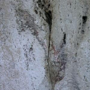 """Colosseo, sulle arcate riaffiorano bagliori di rosso, la direttrice Rea """"Quei numeri colorati, scoperta eccezionale"""""""