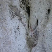 """Colosseo, sulle arcate riaffiorano bagliori di rosso, la direttrice Rea """"Quei numeri..."""