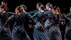 Passi sensuali e ritmi avvolgenti il flamenco al Parco della Musica
