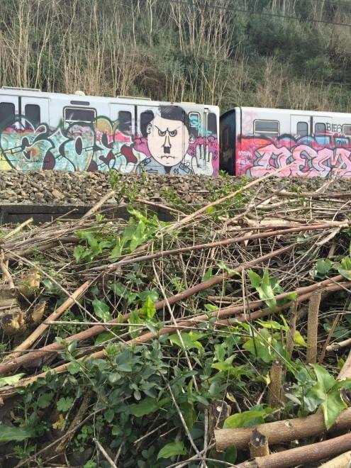 Roma, vandali in azione: su un treno il graffito con il volto di Hitler