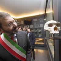 Casal de' Pazzi, apre il museo comunale del Pleistocene. Marino: