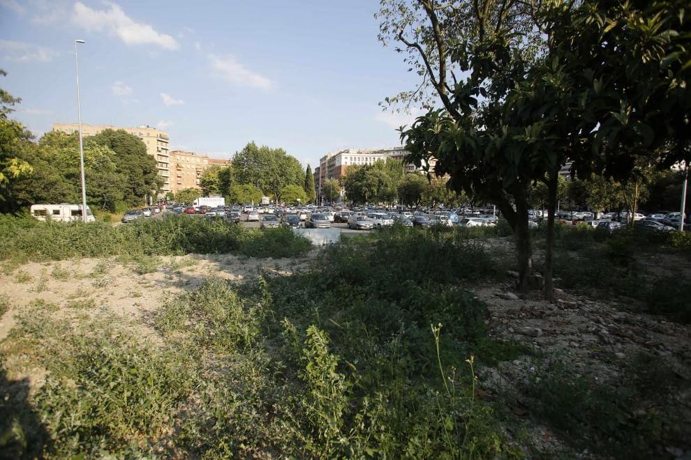 Roma, nel prato abbandonato di piazzale Clodio violentata una 15enne