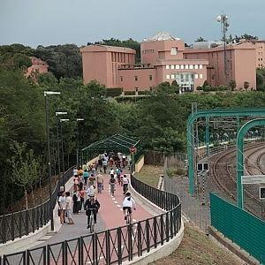 """Campidoglio, via libera alle piste ciclabili """"in rosa"""""""