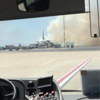 L'incendio nella pineta vicino all'aeroporto di Fiumicino