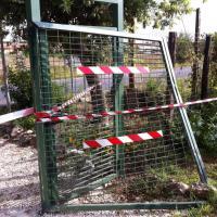 Fregene, auto sfonda la cancellata dell'oasi Wwf