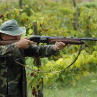 Il triste ritorno della stagione della caccia