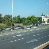 Albero pericolante, chiusa via Appia Pignatelli