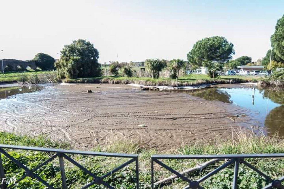 Sos parco palatucci a tor tre teste carpe uccelli e for Lago per tartarughe