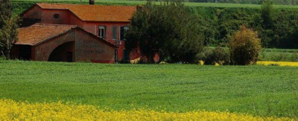 Castel di Guido, così Comune di Roma e Regione Lazio uccidono l'oasi gioiello