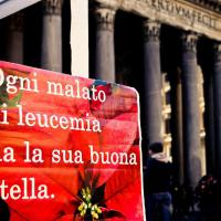 Dal 5 all'8 dicembre nelle piazze di Roma tornano le stelle di Natale Ail