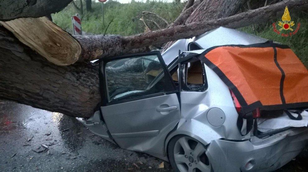 Albero cade su un'auto a Roma: due vittime