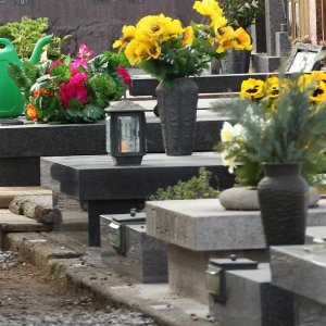 Roma, rubano fiori al cimitero per poi rivenderli: due arresti