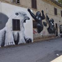 Street art alla Magliana: tra gorilla e orsi polari le opere di Groove