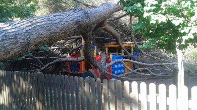 Villaggio Olimpico, albero cade sulle giostre