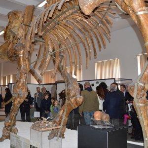 Roma, un Sabato al museo per tutto maggio alla Sapienza