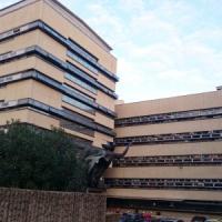 Roma, truffa sui rimborsi del Comune: a processo consigliere Fratelli d'Italia