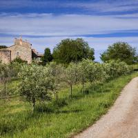 Roma, il Bio Village al GAS Brancaleone, per gli amanti dei prodotti a km zero