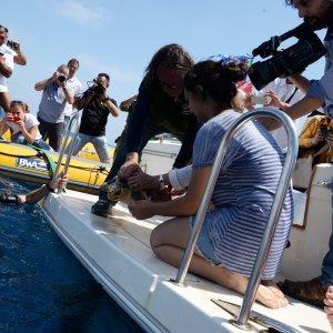 Ostia, tornano in mare le tartarughe marine Ottone e De Andrè