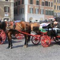 Botticelle a Roma, i vetturini contro Muraro: