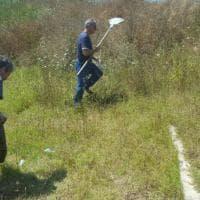 Magliana, il minisindaco pulisce il parco con i volontari