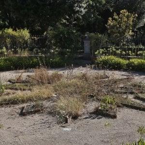 Roma nel giardino segreto di galleria borghese bruciato dalla calura - Il giardino segreto roma ...