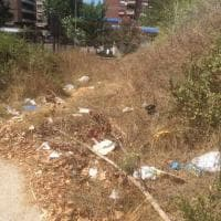 Roma, degrado al Trionfale: cartacce ed erbacce nel parco di Monte Ciocci
