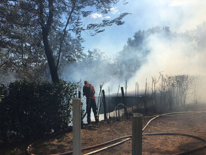 Roma, incendio nel parco del Pineto: fumo visibile da tutta Roma Nord