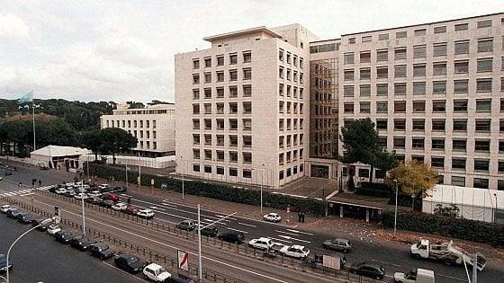 Roma, telefonata anomina segnala bomba nella sede Fao