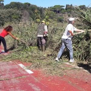 """Roma, machete e sudore: i ciclisti puliscono la pista sul Tevere. """"È ora di agire"""""""