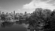 Imagine, così gli scatti  raccontano Central Park