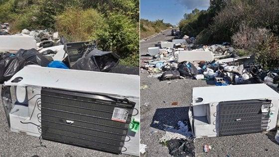 Grillo lancia voto del 'Non Statuto', probiviri decidano espulsioni