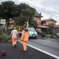 Violento temporale a Ostia: alberi caduti e case sommerse dall'acqua