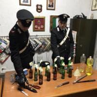 Roma, arrestati tre giovani sorpresi a fabbricare molotov