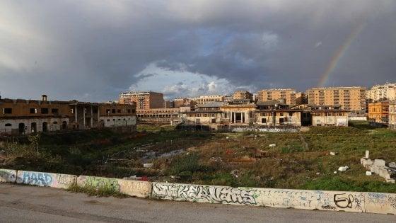 """Ex Mercati generali Roma, dieci anni nel fango. E si riparte da zero """"Serve più verde"""""""