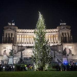 """Luci last minute per l'albero in piazza Venezia a Roma: """"È il più triste"""""""