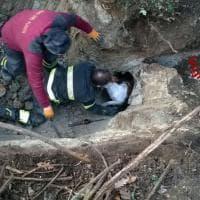 Roma, i vigili del Fuoco scavano a mani nude e salvano un cane caduto in un tunnel
