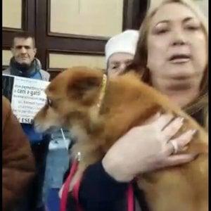 Genzano, donna col cane allontanata dalla chiesa, animalisti interrompono la messa