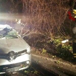 Rocca di Papa, albero su auto: giovane ferita. Maltempo, rami caduti e pali pericolanti