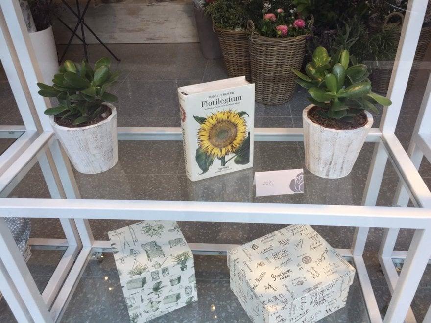 Roma, apre alla Balduina  libreria-fioreria