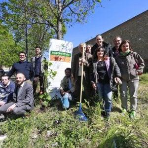 Roma, dodici senzatetto scendono in campo per la cura del verde