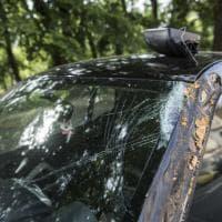Roma, albero cade su un'auto sul lungotevere Flaminio: donna ferita lievemente