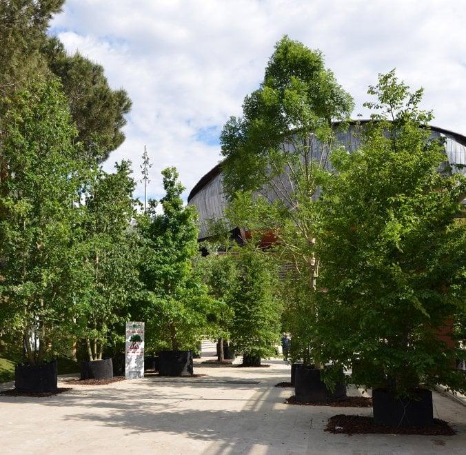 Roma, Festival del verde e del Paesaggio all'Auditorium Parco della Musica