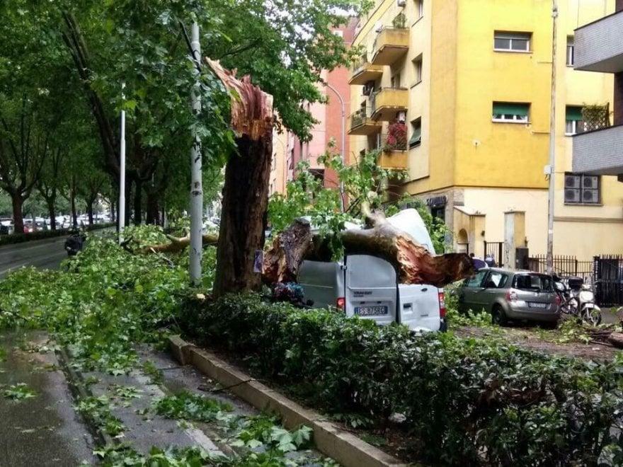 Maltempo a Roma, albero cade e colpisce furgone su circonvallazione Gianicolense: due feriti lievi