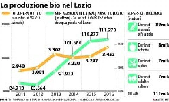 Bio economia, boom nel Lazio delle aziende verdi