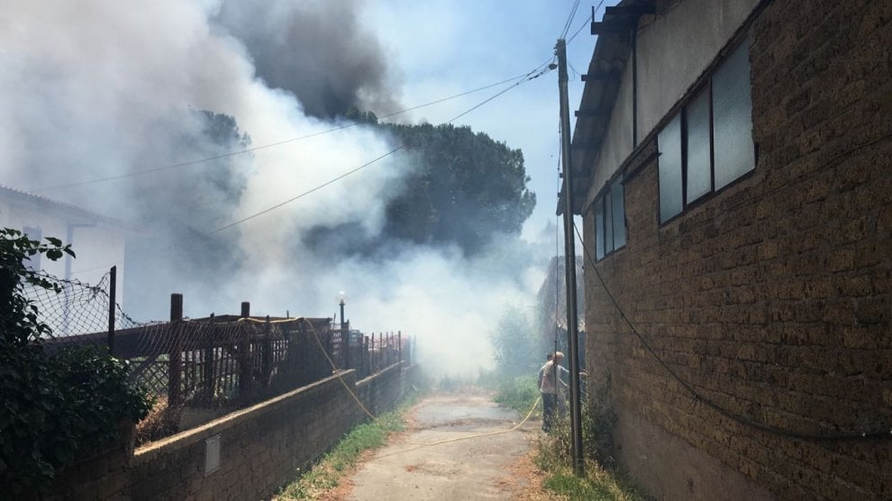 Roma, a fuoco sterpaglie a Casetta Mattei: il fumo visibile dal Centro