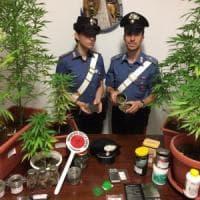 Roma, camerieri di giorno e spacciatori di notte: quattro arresti a Testaccio