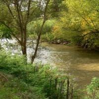 """La Valle dell'Aniene insorge: """"Da Acea meno prelievi o l'oasi naturale"""