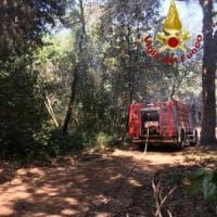 Formia, arrestato piromane: appiccava le fiamme vicino alla linea ferroviaria