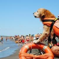 Ostia, paura in mare: madre e figlia salvate dai bagnanti