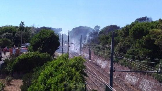 Roma, incendio a ridosso della pineta di Castel Fusano